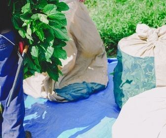 mulberry leaves in bags