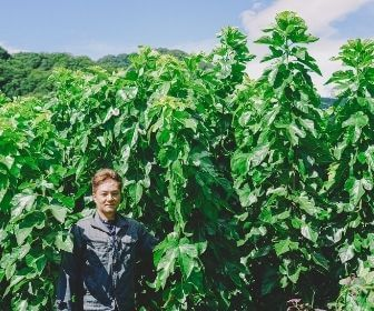 man in fron of mulberry plants