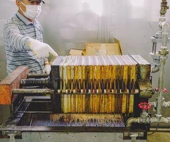man making rapeseed oil