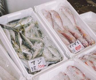 aji and amadai at shimane fish market