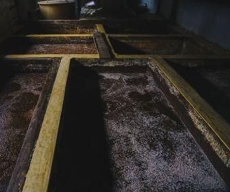 soy sauce fermentation process in shimane