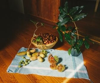 shimane's plants