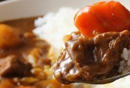 Unique Japanese curry