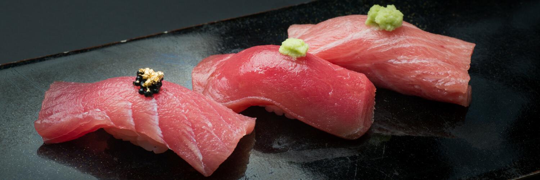 akami otoro chutoro tuna