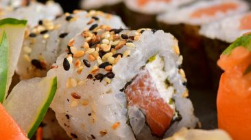 autumn travel brazilian sushi roll