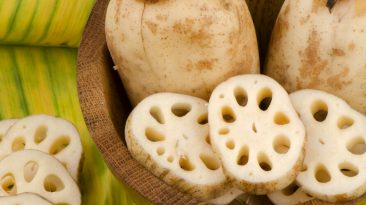 lotus root vegetable slices