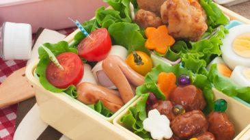 picnic bento box