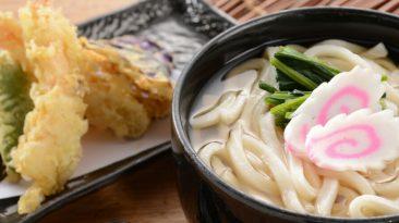 udon noodle dishes
