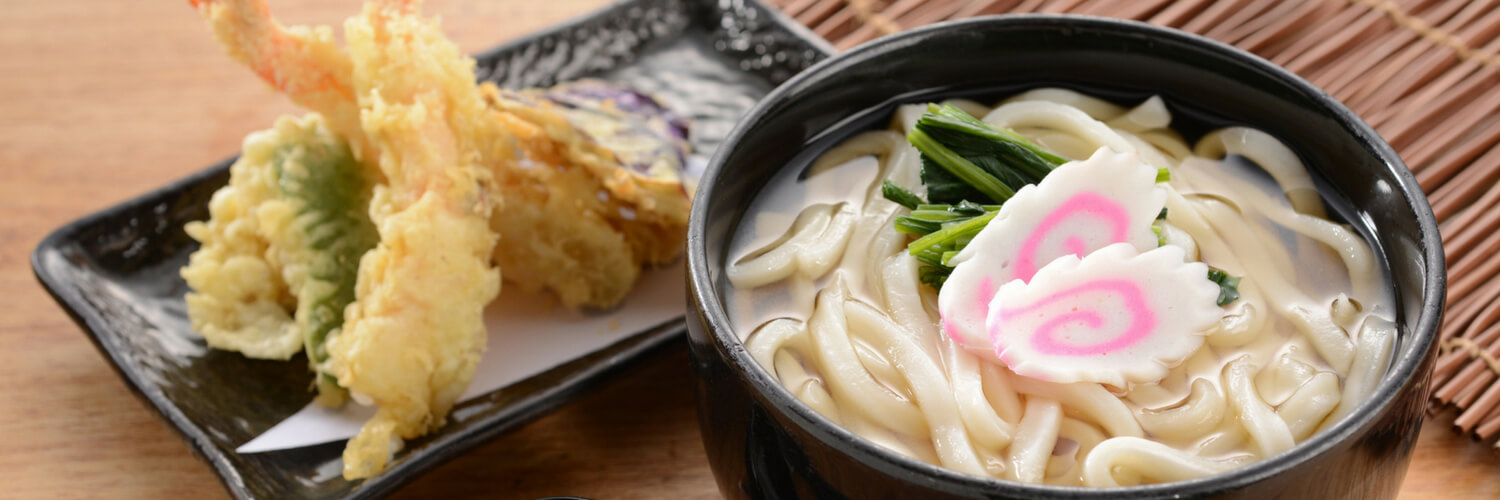 udon noodle dishes